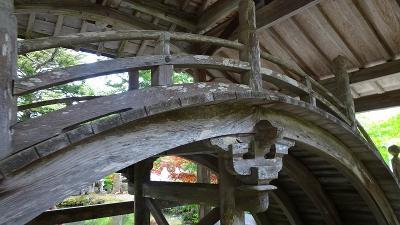 白毫寺の九尺藤を見に行きました 下巻。