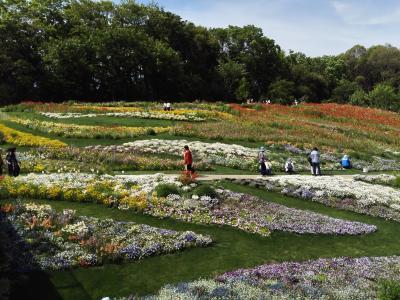 GWは花に囲まれての~んびりと里山ガーデンへ
