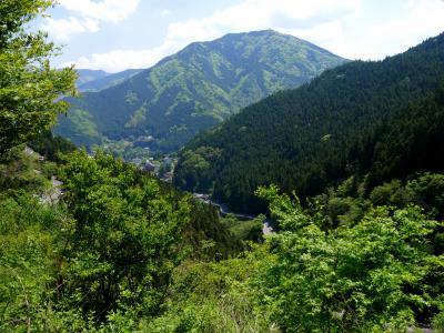 徳島高知ドライブ旅行11-高知から奥祖谷への3時間のドライブ