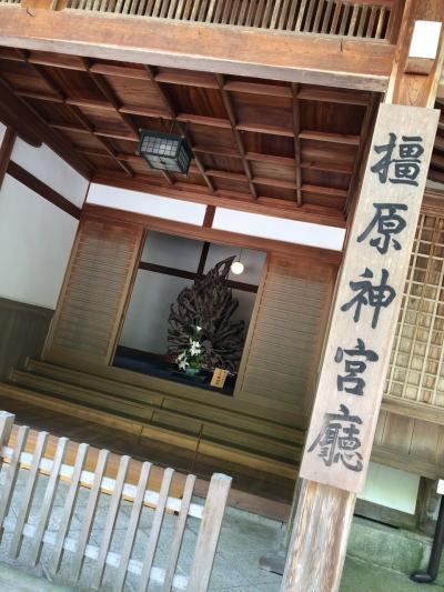 橿原神宮ほのぼの街歩き!…令和元年初詣!