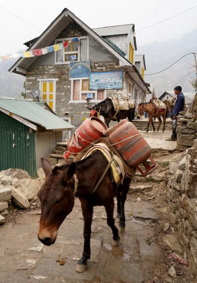 エベレスト街道274㌔巡礼の道を歩き登った記録 7.ヌンタラ~カリ・ラ・パス(20.5km)