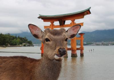 広島家族旅行(大和ミュージアム、原爆ドーム周辺、宮島・厳島神社、三段峡)