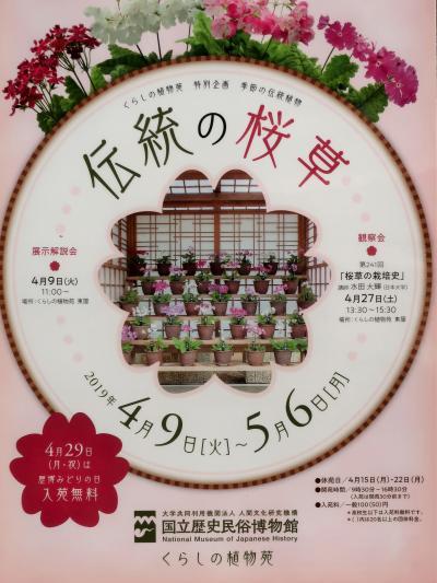 佐倉-5 くらしの植物苑b  [伝統の桜草]展 ☆サクラソウ:栽培品種・多種多様に