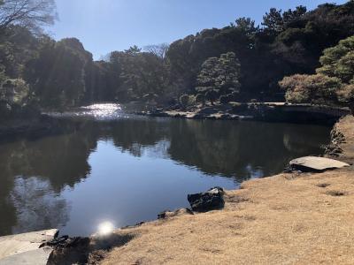 東京の旅 1 新宿
