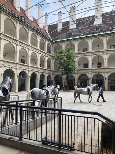 GWザルツブルグ&ザルツカンマーグート&ウィーンの旅~ウィーン(7)