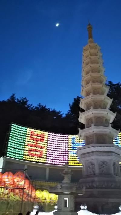 釜山の灌仏会に行って見ました