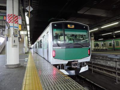 2019春 青春18旅 【本物の出会い 栃木編】Part.3 ~ <<電池>>で走る列車に乗ってきた。~