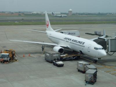 JL804便:台湾(桃園)・日本(成田)線で返日本。737-800機材。