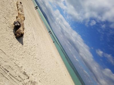 沖縄県 南国の島旅 part3