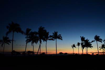 初めてのハワイ島 (夫婦還暦旅行第二弾) 1日目