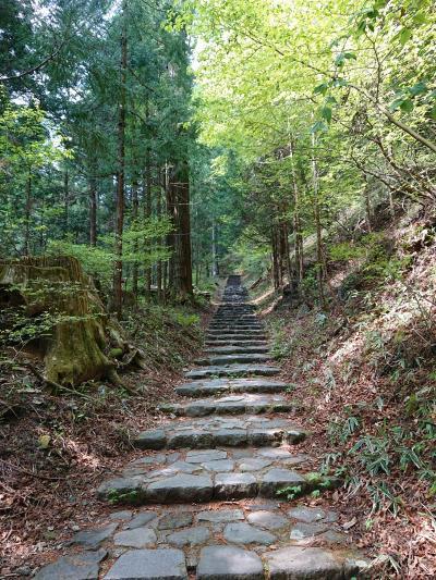 初夏の日光 初日は輪王寺から滝尾神社ハイキング。パワースポット巡り