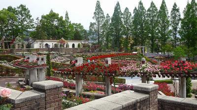 バラの花が咲き乱れる・・・荒牧バラ公園 中巻。