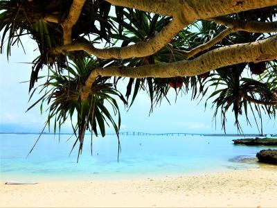 美ら海の絶景 コバルトブルーの宮古島 5  伊良部大橋=下地島空港= 通り池= 長山の浜
