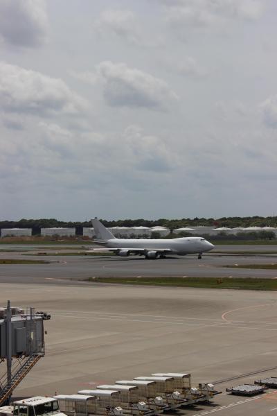 ANA A380 FLYING HONU 2号機を見に成田空港へGO!