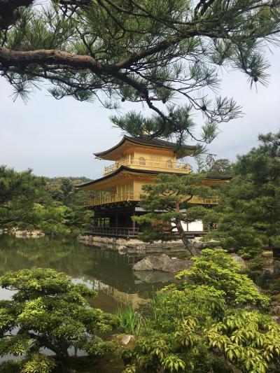子連れで京都はこうなるよね