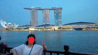 空、船、乗り物から楽しむシンガポール②