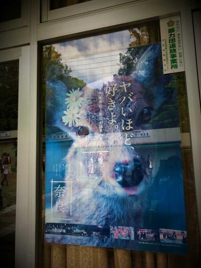 10連休ド真ん中のミッションポッシブル(後編):2019年GW大阪の旅