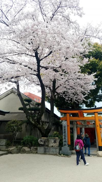 福岡県 パワースポット part3