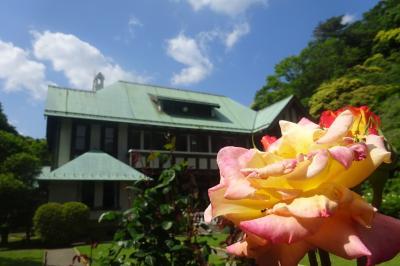 鎌倉 バラと洋館めぐり(後編) 長谷こども会館、かいひん荘鎌倉、古我邸、旧華頂宮邸
