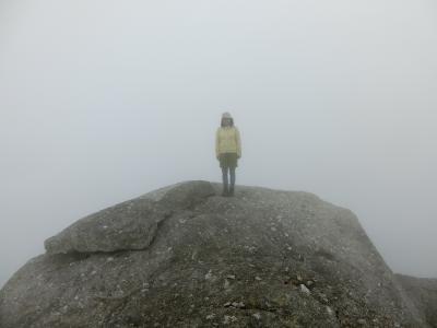 屋久島 植生の垂直分布を歩く 黒味岳