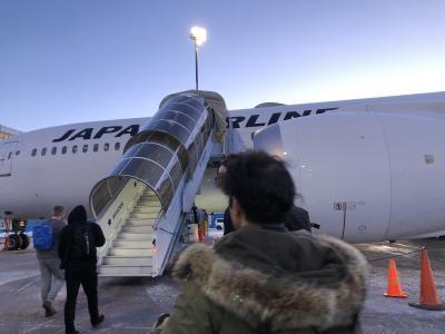 フィンランドのオーロラを求めて(4~5日目 サーリセルカ-ヘルシンキ-成田-新潟)