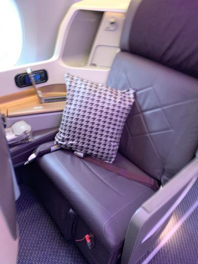 シンガポール航空A350ビジネスクラスで行く 2019年マイル修行第4弾 前編