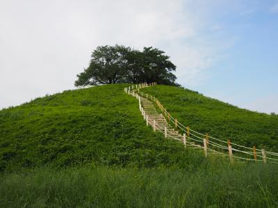富岡製糸場に行く途中、偶然見つけた世界遺産を目指すさきたま古墳群