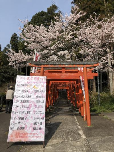 桜の花とフラワーセンター