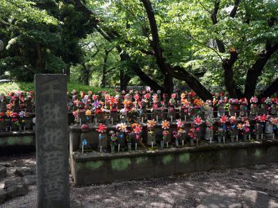 東京タワーと増上寺を訪ねて