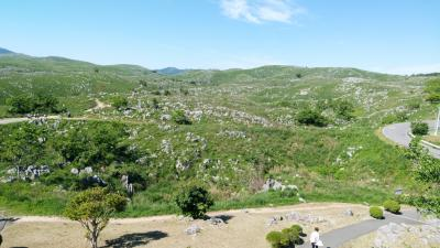 お仕事旅ではありますが。。。新緑の季節、宮島と山口の旅。