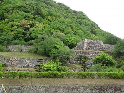 日本100名城を行く(鳥取城)