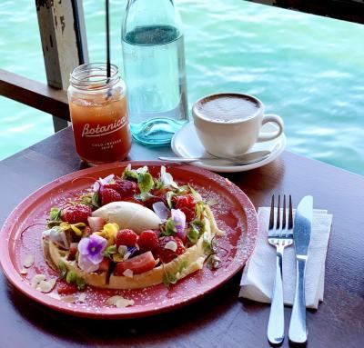 こんなシドニー旅行記他にない☆ソフィテルシドニーダーリングハーバー・コーナールームに泊まるステキカフェ巡り~ブッシュウォークでサプライズ