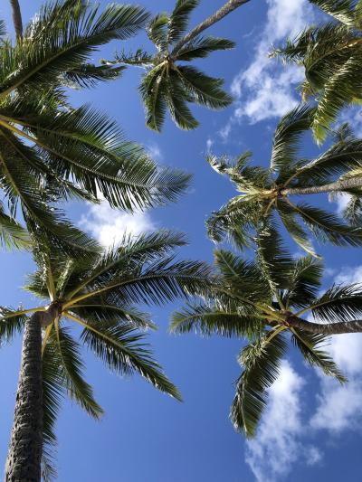 愛が溢れてるハワイ