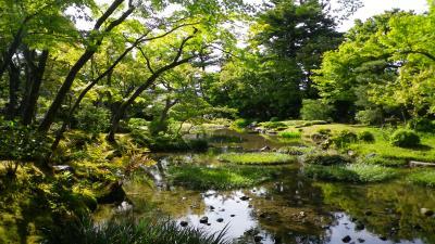 新緑もまた美しく~法然院・大豊神社・永観堂・南禅寺・無鄰菴~