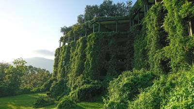 素晴らしく美しい景色へ コロンボとシギリア