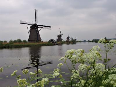 2019GW ベルギー・オランダ一人旅⑨【世界遺産・キンデルダイクを見てみたい♪】編