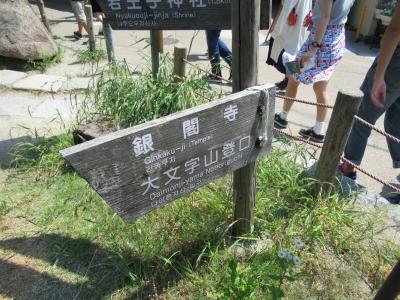 大文字山トレイルコース。