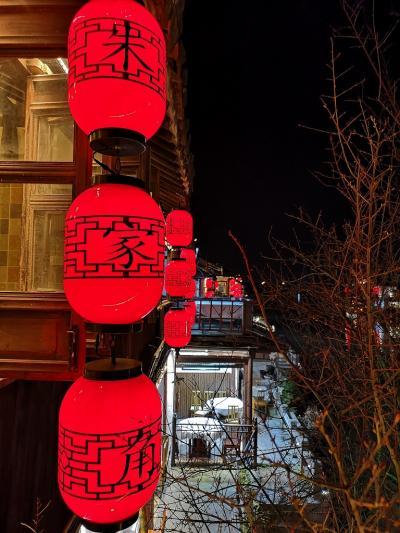 平成最後の旅は中国・世界遺産の町へ①(乗り継ぎ・上海編)