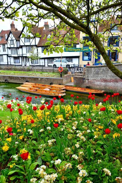 """世界遺産が鎮座する巡礼地""""カンタベリー""""&15世紀の街並みが残る村""""チラム"""" 「春の始まりを飾るウィステリアを求めて英国旅 Vol.2」"""