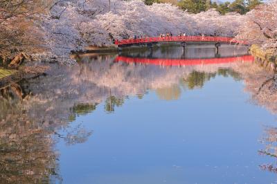 2019・5 GWは東北へ桜を見に行こう 2