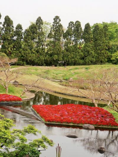 梅小路公園-1 朱雀の庭・いのちの森 回遊して ☆伝統と創生の調和をめざした作庭