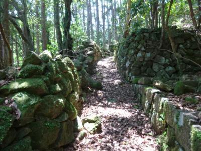 熊野古道三木峠から羽後峠、名鉄ハイキング