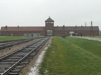 「涙を流すくらいなら、考えてほしい」アウシュヴィッツ強制収容所