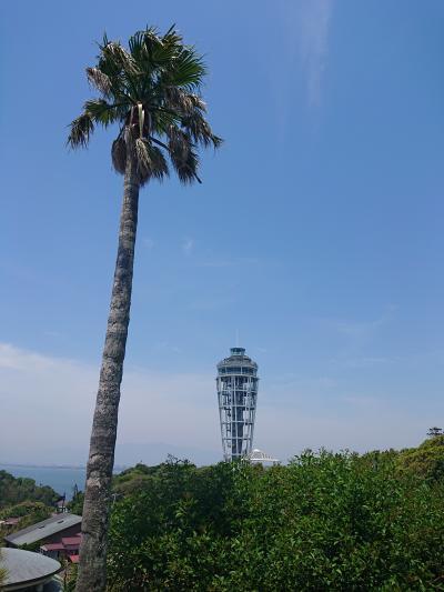 江の島へ行ってきました。