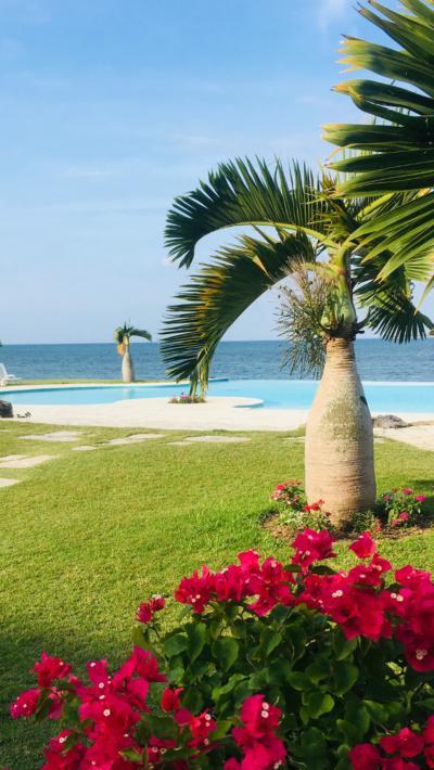 4度目の沖縄は初上陸の石垣島