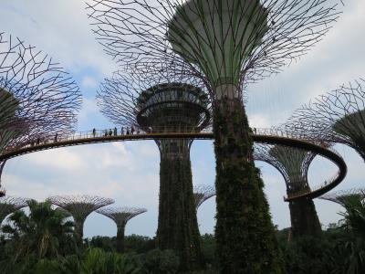 2016.3 シンガポール ④ チャイナタウン ~ガーデン・バイ・ザ・ベイ