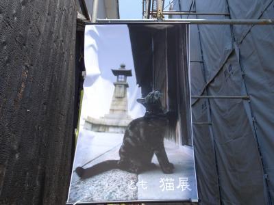 広島ひとり旅 のどかな港町 鞆の浦へ