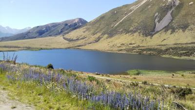 海外一人旅第17段はニュージーランドの大自然に癒される旅 - 6日目(アーサーズパス編)