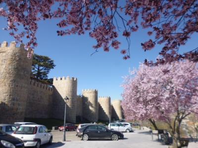 スペインの城壁の町アビラ散策