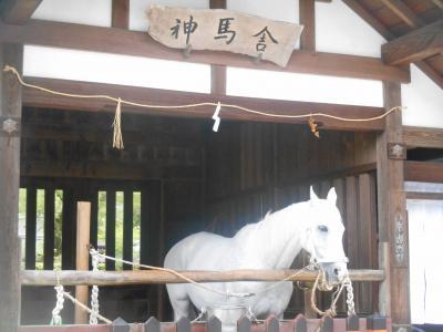 2019GW都紡ぎ旅 寒い寒い京都編② 平成の締めくくりは~やっぱりポンコツだった件